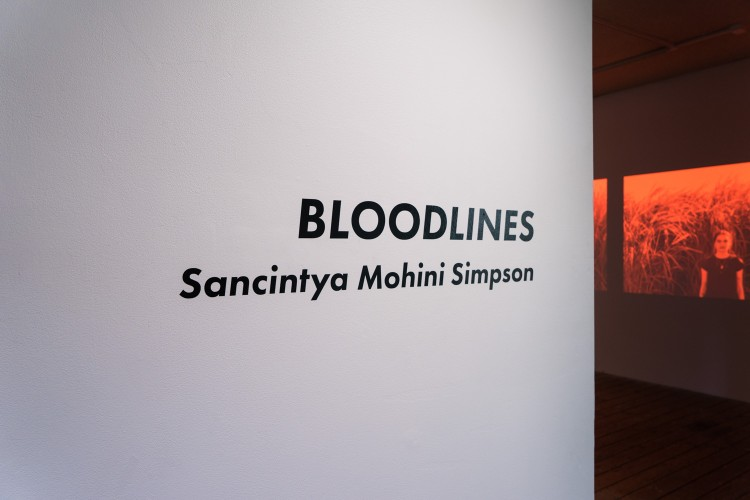 Bloodline Exhibition LR-40