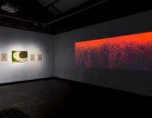 Bloodlines: Blak Dot Gallery