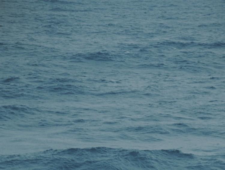 Sequence-01.00_00_16_14.Still005